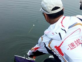 钓鱼装备抄网的重要性