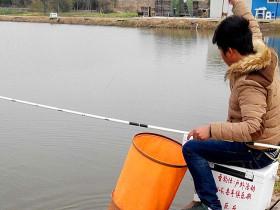 冬季钓鲤鱼饵料是松散好还是软粘好?