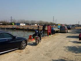上海速拔垂钓用品研发基地黑坑钓鲤鱼