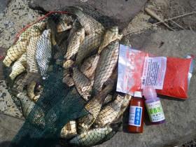 鱼护网兜区别性很强