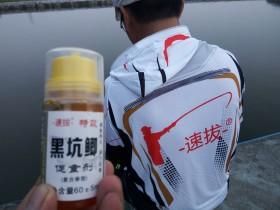 钓鱼小药到底加多少?