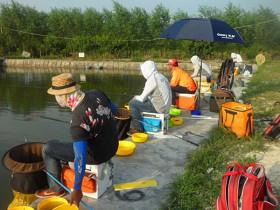 夏季钓鱼比赛注意事项