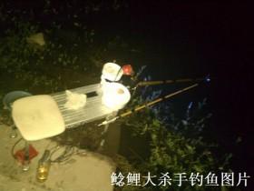 野河夜钓鲤鱼小连杆