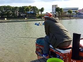 速抜战队钓鲤鱼视频