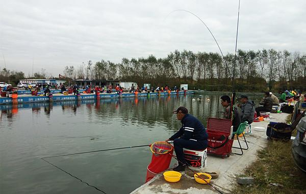 上海浦秀钓场竞技池最后的比赛
