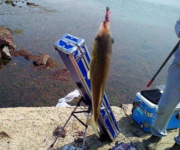 鱼竿包选择很重要
