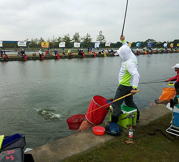 2016年钓鱼比赛观看有感