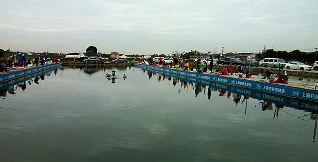 建造竞技比赛的鱼池是否有要求