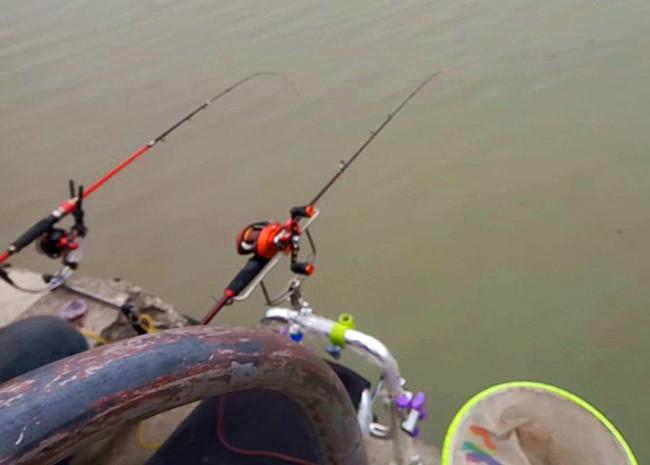 野钓大小鱼通杀