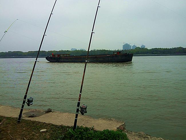 黄浦江钓鱼