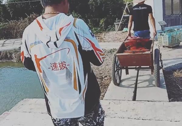 粘麻团钓回锅鲤鱼